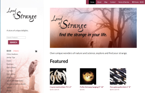 Land of Strange branding and web design
