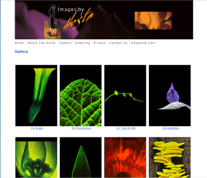 Images By Hosta web programming & animation  (design collaborated with Fred Lamb Design).