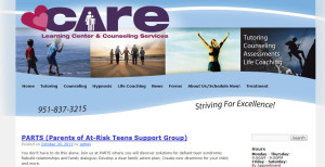 Care Learning Centers branding and web design